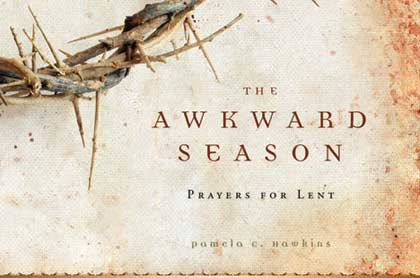 Awkward Season cover