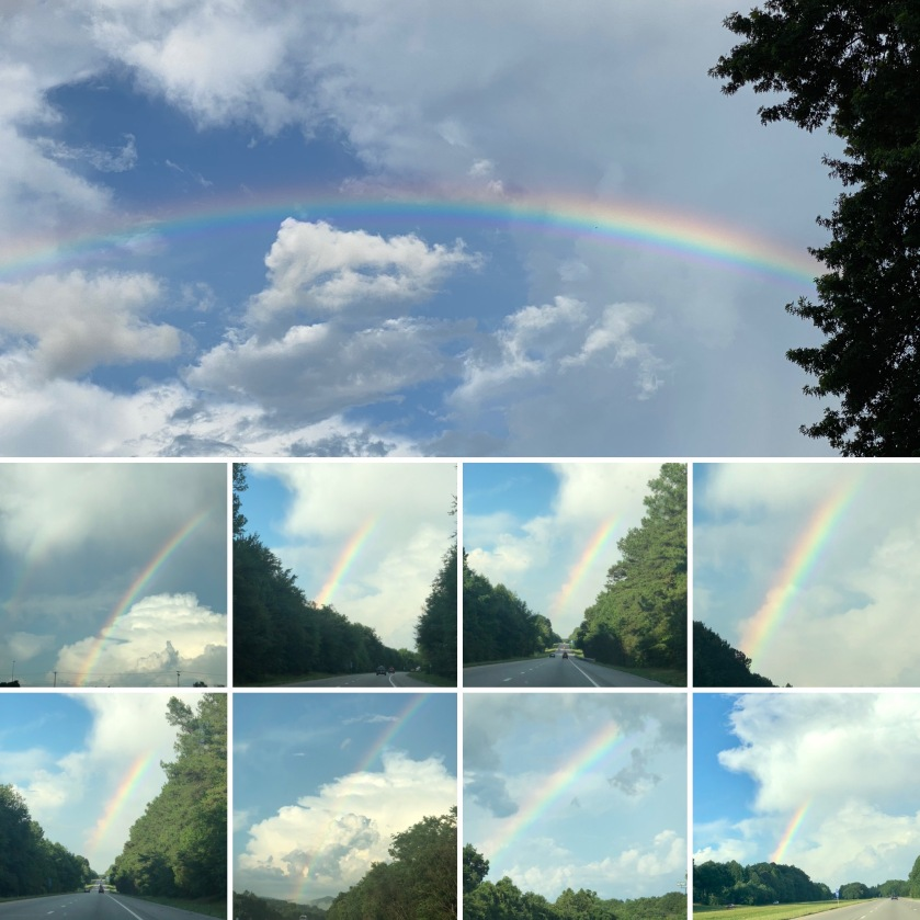 collage of rainbows